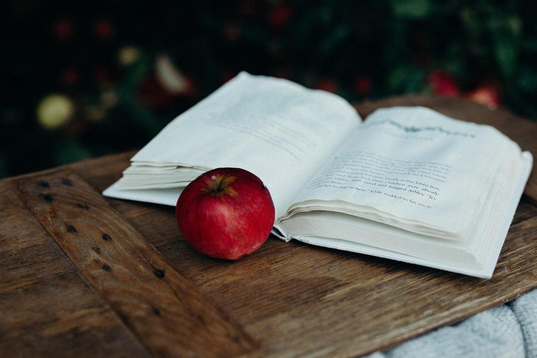 Poveștile și limbajul arhetipal al sufletului nostru
